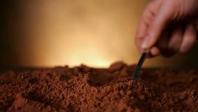 Χέρι με το κουτάλι που ωθεί μέσω της σκόνης κακάου - κλείστε επάνω απόθεμα βίντεο