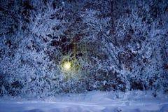 Χειμώνας στην πόλη του Ufa στοκ εικόνες με δικαίωμα ελεύθερης χρήσης