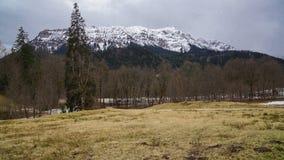 Χιονισμένα δέντρα και λιβάδι βουνών στοκ φωτογραφία με δικαίωμα ελεύθερης χρήσης