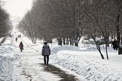 Χιονοπτώσεις άνοιξη σε μια αλέα πόλεων στοκ φωτογραφίες με δικαίωμα ελεύθερης χρήσης
