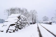 Χιονώδες Woodpile στη γαλλική επαρχία κατά τη διάρκεια της εποχής/του χειμώνα Χριστουγέννων στοκ εικόνες