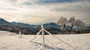 Χιόνι και πάγος τοπίων coverd ν στοκ φωτογραφία με δικαίωμα ελεύθερης χρήσης