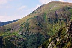 Χλοώδεις κλίσεις των Καρπάθιων βουνών στοκ εικόνα με δικαίωμα ελεύθερης χρήσης