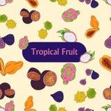 χρωματισμένα τροπικά φρούτα, άνευ ραφής patern ελεύθερη απεικόνιση δικαιώματος