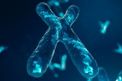 Χ-χρωμοσώματα με το DNA που φέρνει το γενετικό κώδικα Έννοια γενετικής, έννοια ιατρικής Μελλοντικές, γενετικές μεταλλαγές απεικόνιση αποθεμάτων