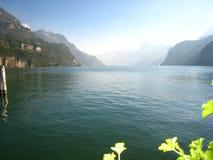 Υπέροχα άποψη πανοράματος με μια σμαραγδένια μπλε ελβετική λίμνη με τα χιονισμένα βουνά και τα λουλούδια στοκ φωτογραφία με δικαίωμα ελεύθερης χρήσης