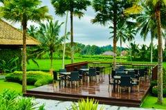 Υπαίθρια να δειπνήσει περιοχή με τον πίνακα και την καρέκλα με την πράσινη άποψη πεζουλιών ρυζιού στοκ εικόνες με δικαίωμα ελεύθερης χρήσης