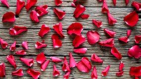 Υπόβαθρο ημέρας βαλεντίνου με τα κόκκινα τριαντάφυλλα στοκ εικόνα