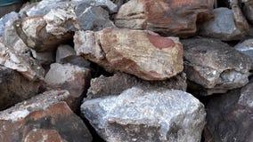 Υπόβαθρο των μεγάλων πετρών με τα φύλλα φοινικών 4K απόθεμα βίντεο