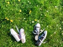 Πάνινα παπούτσια υποβάθρου άνοιξη στην πράσινη χλόη υπαίθρια στοκ φωτογραφία με δικαίωμα ελεύθερης χρήσης