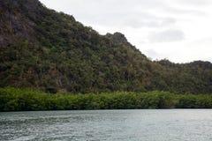 Πάρκο Geoforest Kilim, Langkawi, Μαλαισία στοκ εικόνες με δικαίωμα ελεύθερης χρήσης