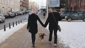 Πίσω άποψη του νέου μοντέρνου ζεύγους που περπατά με το σκυλί στην οδό Άνδρας και γυναίκα ευτυχείς από κοινού Λαγωνικό σκυλιών δα απόθεμα βίντεο