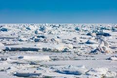 Παγωμένοι επιπλέοντες πάγοι πάγου του βόρειου Ατλαντικού Ωκεανού που καλύπτουν τη θάλασσα στοκ φωτογραφία με δικαίωμα ελεύθερης χρήσης