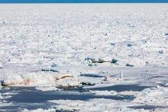 Παγωμένοι επιπλέοντες πάγοι πάγου του βόρειου Ατλαντικού Ωκεανού που καλύπτουν τη θάλασσα στοκ φωτογραφίες