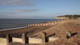 Παραλία επιπέδων Pett κοντά στο ξύλο Fairlight, ανατολικό Σάσσεξ Αγγλία UK Hastings απόθεμα βίντεο