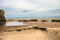 Παραλία του ST Cyrus, Σκωτία στοκ εικόνα