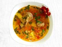 Παραδοσιακή ρουμανική σούπα βόειου κρέατος με τα λαχανικά στοκ φωτογραφίες με δικαίωμα ελεύθερης χρήσης