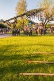 Παραδοσιακός που διακοσμείται maypole δημιουργείται κατά τη διάρκεια του λαϊκού φεστιβάλ στο αυστριακό αλπικό χωριό StGilgen σε W στοκ εικόνα με δικαίωμα ελεύθερης χρήσης