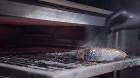 Παραδώστε τα μαύρα γάντια βάζοντας το σολομό ψαριών μέσα στο φούρνο με τους ξυλάνθρακες για το ψήσιμο στη σχάρα φιλμ μικρού μήκους