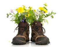 Παπούτσια πεζοπορίας με τα λουλούδια στοκ εικόνες με δικαίωμα ελεύθερης χρήσης