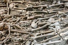Πολλοί σκελετοί σε έναν ανοικτό τάφο στοκ εικόνες