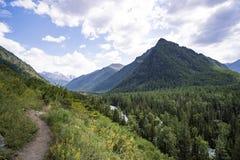 Πορεία βουνών που οδηγεί στην κορυφή του βουνού wildlife όμορφο τοπίο στοκ φωτογραφία με δικαίωμα ελεύθερης χρήσης