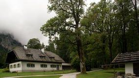Πορεία πεζοπορίας με το σπίτι και δέντρο στο βουνό στοκ φωτογραφία με δικαίωμα ελεύθερης χρήσης