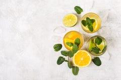Ποτά ή κοκτέιλ εσπεριδοειδών detox με τη μέντα και τις φέτες των φρούτων στοκ εικόνες με δικαίωμα ελεύθερης χρήσης