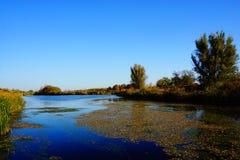 Ποταμός στο άνθισμα στοκ εικόνες με δικαίωμα ελεύθερης χρήσης