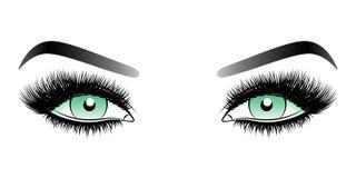 Πράσινα μάτια γυναικών με τα μακροχρόνια ψεύτικα μαστίγια με τα φρύδια απεικόνιση αποθεμάτων