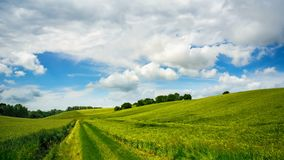 Πράσινοι τομείς, μπλε ουρανός και άσπρα σύννεφα φιλμ μικρού μήκους