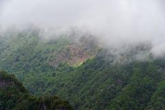 Πράσινος δασικός λόφος στα πυκνά σύννεφα Νησί της Μαδέρας στοκ φωτογραφίες με δικαίωμα ελεύθερης χρήσης