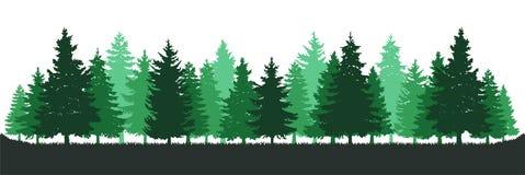 Πράσινο δασικό περιβάλλον δέντρων πεύκων ελεύθερη απεικόνιση δικαιώματος