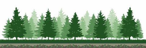 Πράσινο δασικό περιβάλλον δέντρων πεύκων διανυσματική απεικόνιση