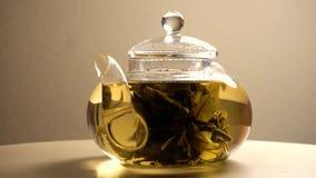 Πράσινο παρασκευασμένο τσάι teapot απόθεμα βίντεο