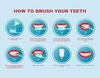 Πώς να βουρτσίσει τη βαθμιαία οδηγία δοντιών σας Οδοντόβουρτσα και οδοντόπαστα για την προφορική υγιεινή Καθαρό άσπρο δόντι Υγιής διανυσματική απεικόνιση