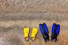 Πτερύγια κατάδυσης στη μεσογειακή ακτή στοκ εικόνα