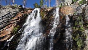 Πτώσεις Foresta στο βρόχο Yosemite απόθεμα βίντεο