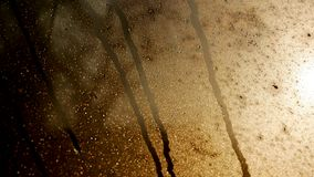 Πτώση του νερού στο γυαλί στοκ φωτογραφίες