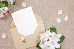 ï ¿ ½ ard με έναν μπεζ φάκελο και άσπρα λουλούδια του δέντρου μηλιάς στο μπεζ ύφασμα Στοκ Εικόνες