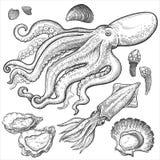 ï ¿ ½ gesetzte Handzeichnungen von Meeresfrüchten Lizenzfreie Stockfotografie