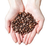 �ands holding coffee beans Royalty Free Stock Photos