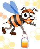 �oney bee Stock Photos