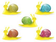 Сгеу snails Stock Photo