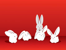 Ð¡atch the moment. Rabbits. Stock Image