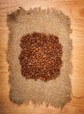 Сoffee beans  on textured brown sack. Сloseup Stock Photography