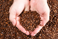 Сoffee grains on the hands Stock Photo