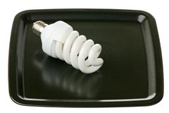 Сompact fluorescent lightbulb on a tray Royalty Free Stock Photos