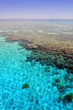 Ð¡oral reef  Stock Photography