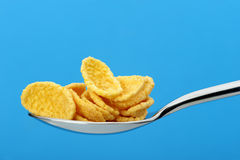 Ð¡ornflakes. A dry breakfast in a spoon. Royalty Free Stock Image